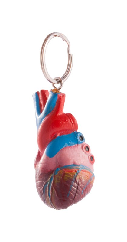 Bestell Schlüsselanhänger Menschliches Herz für Krankenpfleger